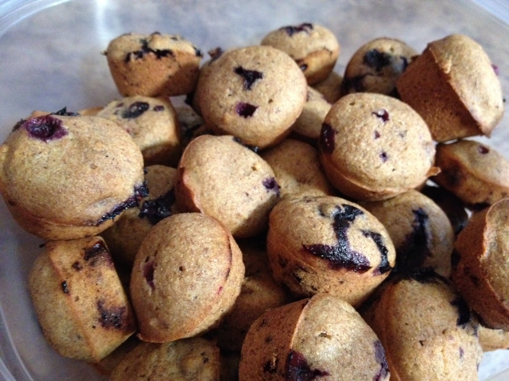 Maple and Blueberry Mini Muffins | Take Back Fitness